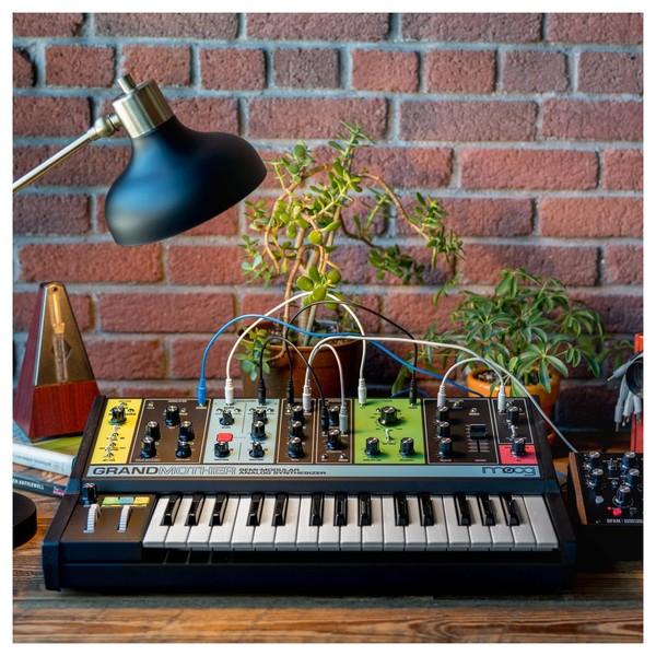 Moog Grandmother Semi-Modular Analog Synthesizer - Lifestyle