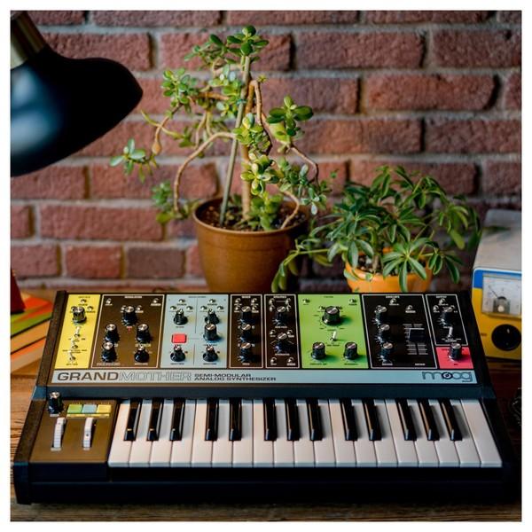 Grandmother Analog Synthesizer - Lifestyle 2