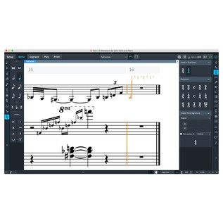 Steinberg Dorico Pro 2 - Write Mode