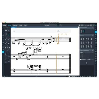 Steinberg Dorico Elements 2 - Write Mode