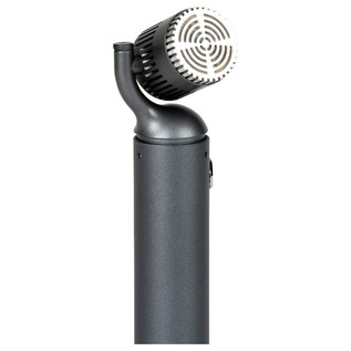 Blue Microphones Hummingbird Small Diaphragm Condenser - Angled