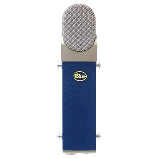 Blue Blueberry Microphone - Angled