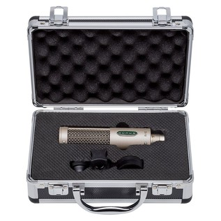 R-10 Passive Mono Ribbon Microphone - Open Case