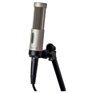 Royer R-10 Passive Mono Ribbon Microphone - Shock Mount