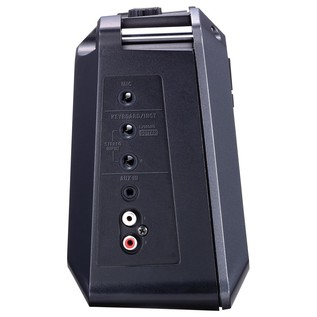 Roland Mobile Cube Side