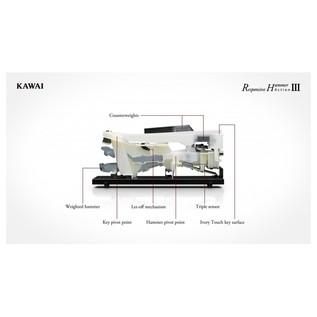 Kawai CN27 Digital Piano, Key Action