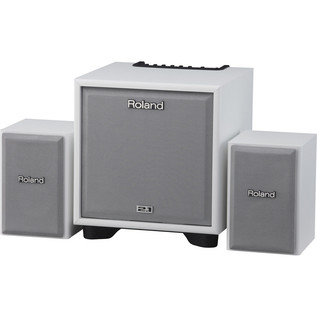 Roland CM110 White Instrument Monitor Amp