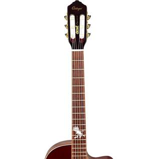 Ortega FDSM Frank Dellé Signature Electro Classical Guitar, Spruce Neck