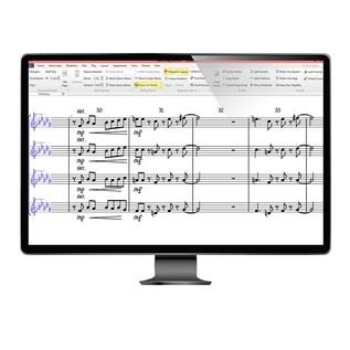 Avid Sibelius - Screenshot (Monitor Not Included)