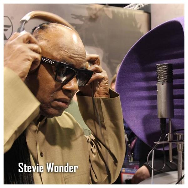 Aston Microphones Spirit Multi-Pattern Condenser Microphone - Stevie Wonder