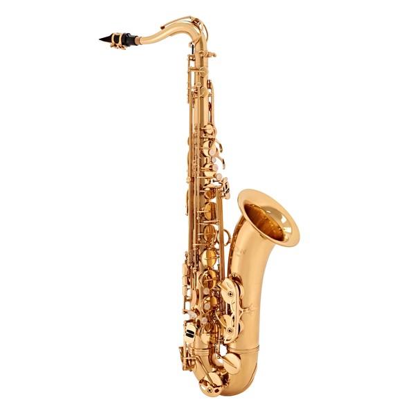 Gigbag pentru saxofon alto Gard MSK Gigbag for Alto Sax, eur - povaralibertatii.ro