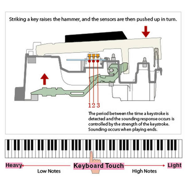 Casio Celviano AP-650 Digital Piano