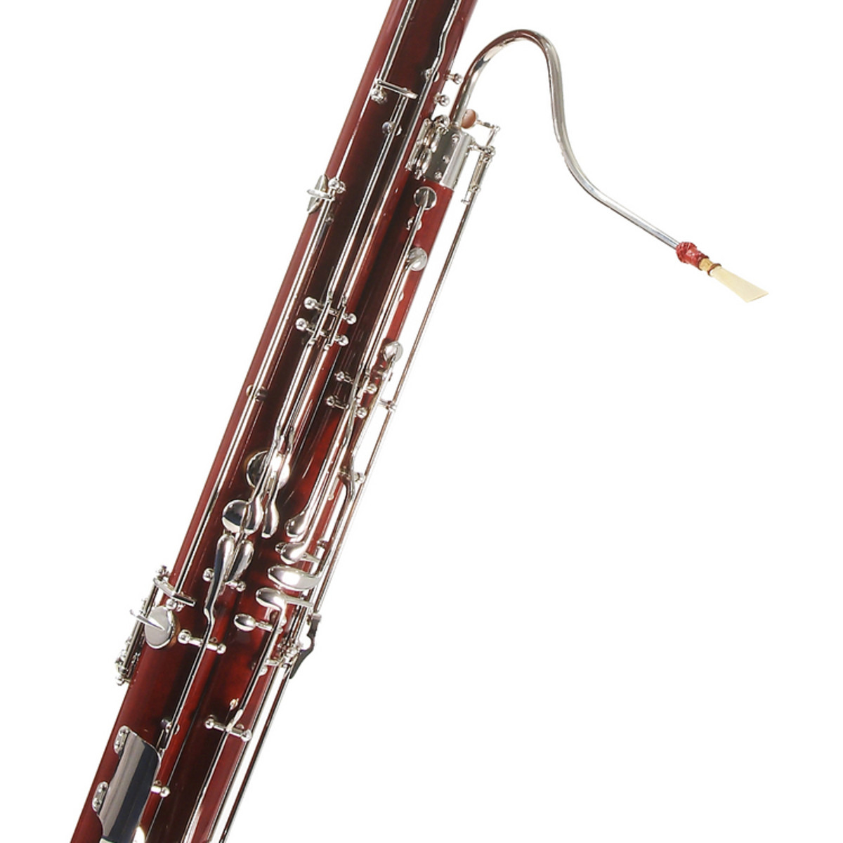 Deluxe Bassoon by Gear4music