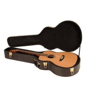 Freshman AB3 Summer Electro Acoustic Guitar with Hardcase in Case