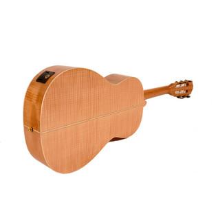 Freshman AB3 Winter Electro Acoustic Guitar with Hardcase Rear