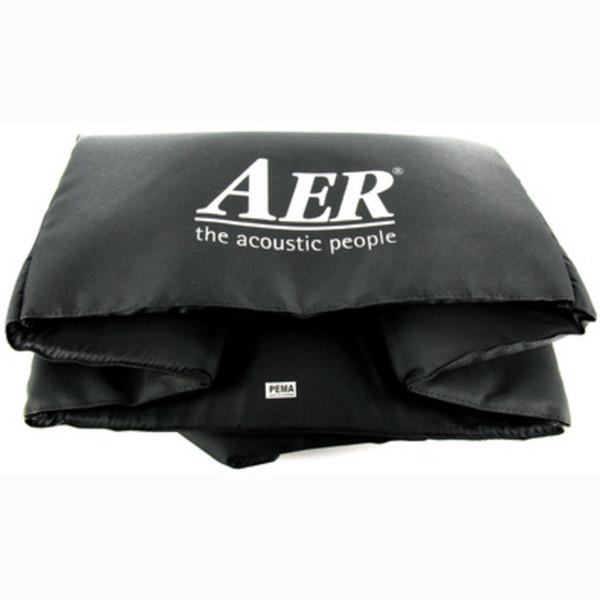 AERDomino Amp Cover