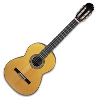 Manuel Rodriguez Professional Guitar