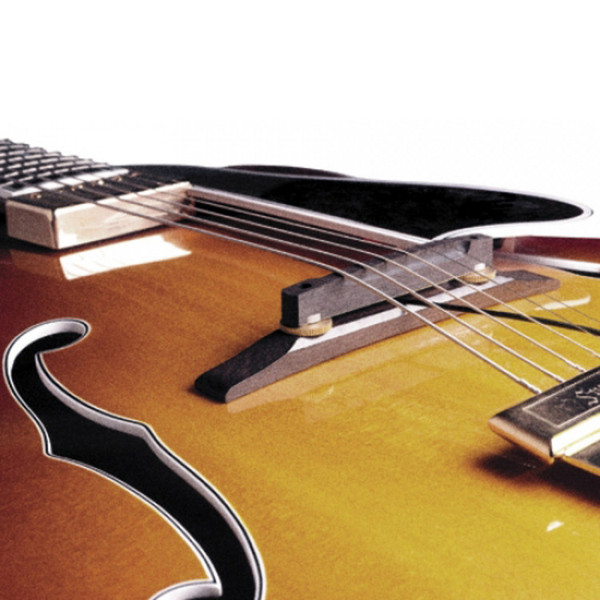 fishman archtop guitar pickup at gear4music. Black Bedroom Furniture Sets. Home Design Ideas