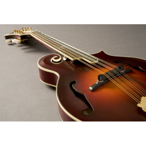 Fishman Nashville Series Archtop Mandolin Pickup