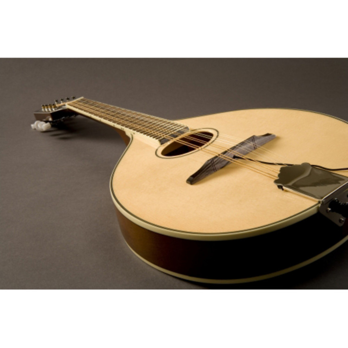 Fishman Nashville Series M-400 Flat Top Mandolin Pickup en ...