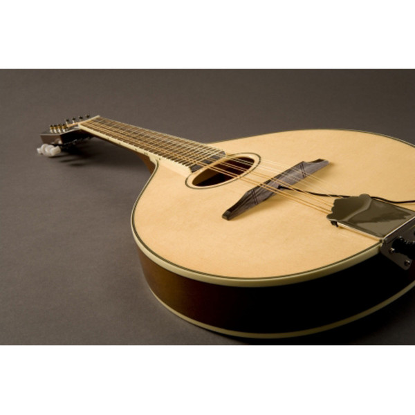 Fishman Nashville Series M-400 Flat Top Mandolin Pickup