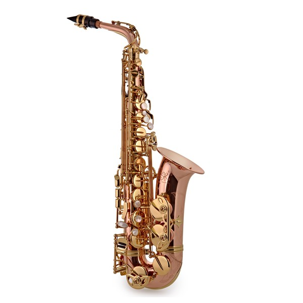 Trevor James SR Alto Saxophone, Phosphor Bronze with Gold Keys