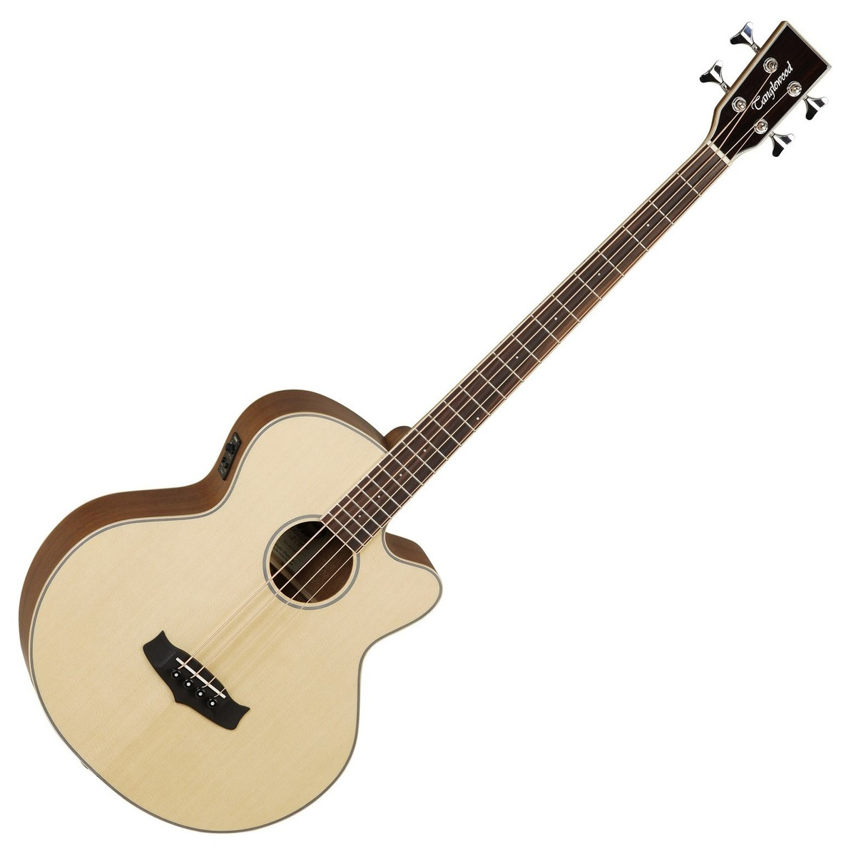 Any opinions on this Acoustic Bass Guitar? | TalkBass.com