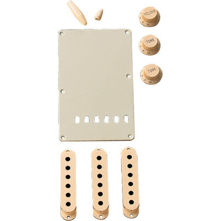 Fender Stratocaster Accessory Kit, Aged White