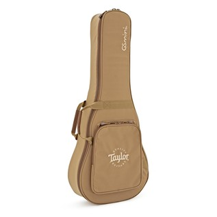 Taylor GS Mini Gigbag