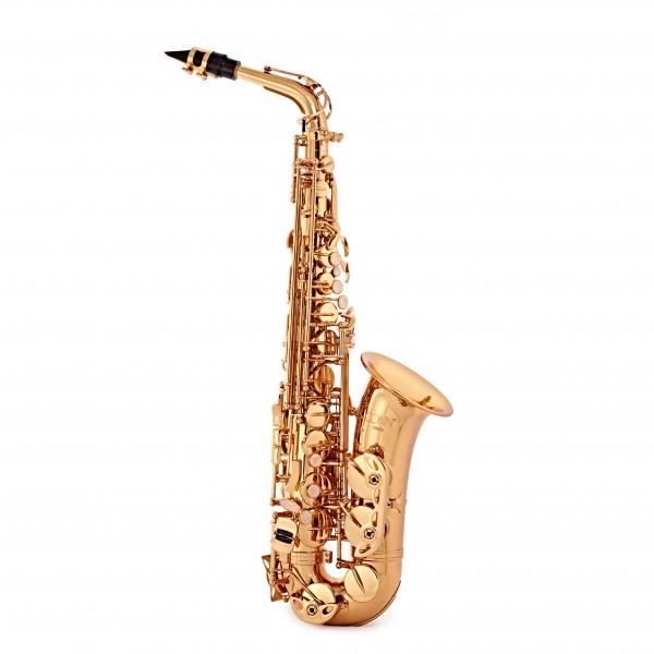 Conn AS650 Alto Saxophone, Gold Lacquer