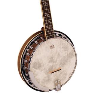 Barnes & Mullins BJ500BW 'Empress' 5 String Banjo 2