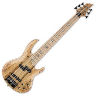 ESP LTD RB-1006SM 6-String Bass Guitar, Natural
