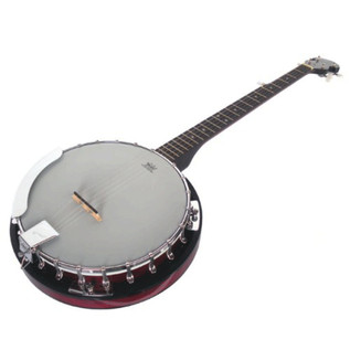 Ozark 2105G 5 String Banjo, with Gig Bag