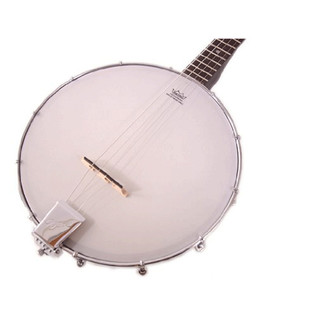 Ozark 2102T Tenor Banjo, with Gig Bag