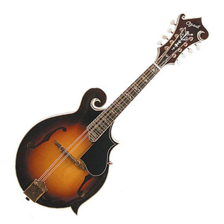 Ozark 2255 Mandolin F Model