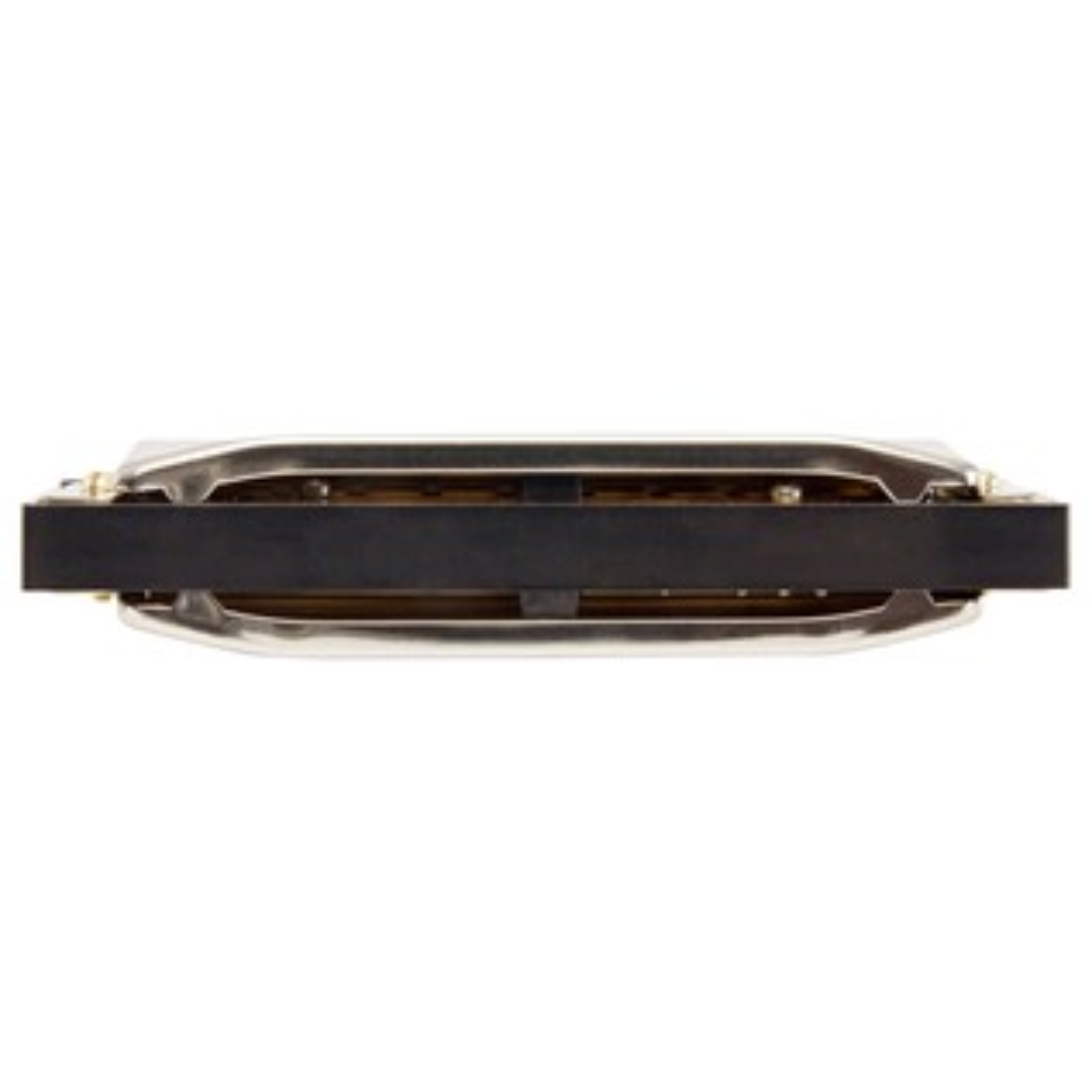 Hohner M560126 Special 20 Harmonica, Key of B